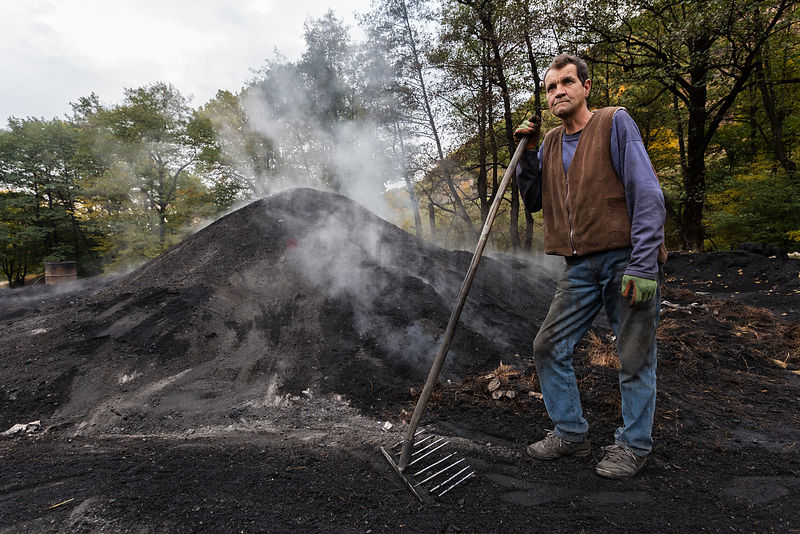 Portrait of a Charcoal Worker
