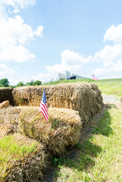 Hay Bales and Flight Path Sculpture (V)