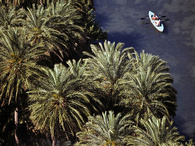 Aerial view of people kayaking on the river Megalos Potamos, between the endemic Cretan palm trees (Phoenix theophrasti) Cret...