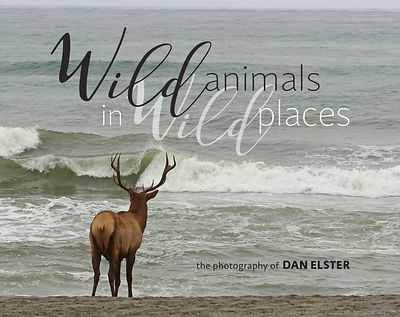 "Order  ""Wild Animals in Wild Places"""