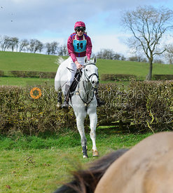 Rupert Onslow jumping the last hedge - Harborough Ride 2014