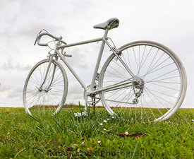 Old White Bicycle in a Field