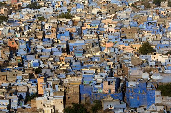 Looking down on the Blue city of Jodhpur, Rajasthan, India, 2010