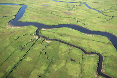 Aerial view of Mosquito control ditches in saltmarshes, Great Egg Harbour, Delaware Bay, New Jersey, USA
