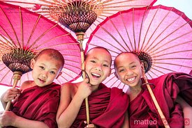 Portrait of three novice monks under red umbrellas, Myanmar