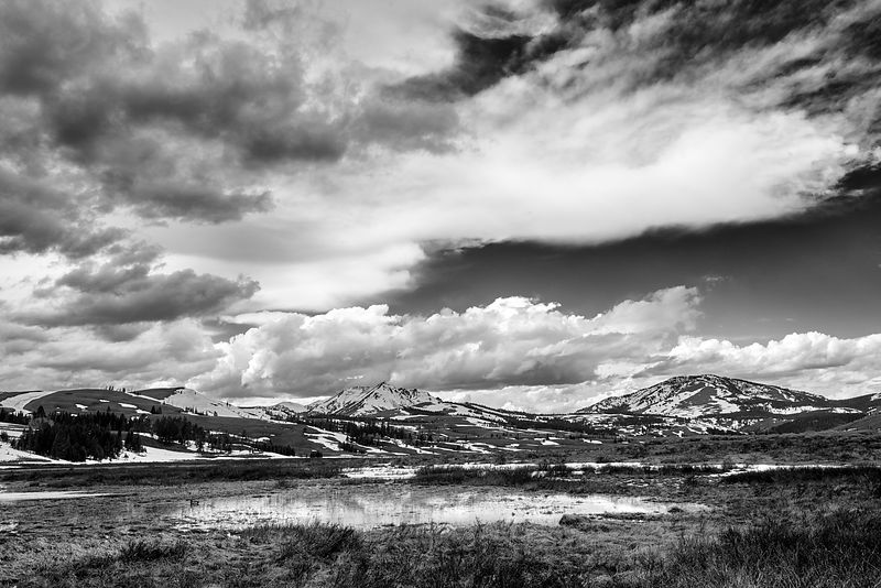 Gallatin Range Black and White