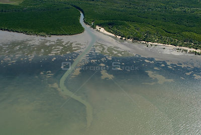 Aerial view of mudflats and mangroves near Cairns, Queensland, Australia