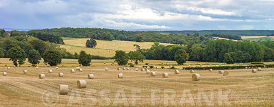 Haystack on fields
