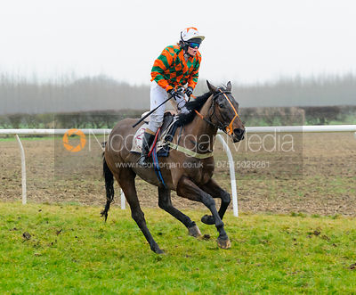 Race 7 (ii) - Maiden - Midlands Area Club Point-to-point 2017, Thorpe Lodge 29/1