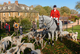 Andrew Osborne MFH and hounds at Preston Lodge