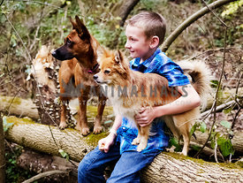 boy sitting on log with two dogs