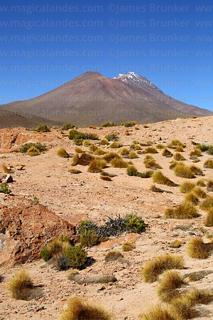 Eroded volcanic lava flows, ichu grass  and Pabellon (L) and Cañapa (R) volcanos, Nor Lípez Province, Bolivia