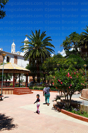 Church towers, bandstand and palm tree in Plaza Camargo, Camargo, Chuquisaca Department, Bolivia