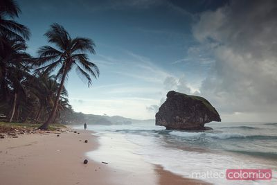 Bathsheba beach in the Barbados