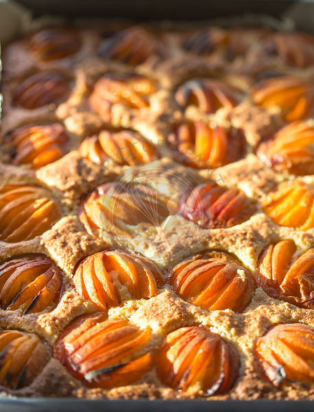 close up of apricot squares fresh from oven.