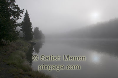 Foggy sunrise over Yellowstone River, Yellowstone National Park, Wyoming, USA