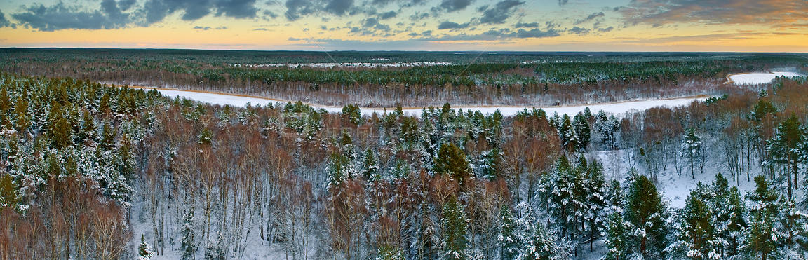 Silver birch (Betula pendula) and Scots pine (Pinus sylvestris) forest in winter, aerial view. Muritz-National Park, Germany,...