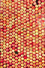 Apple Sorting #11