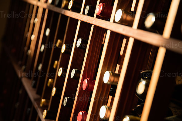 Close-up of a rack with wine bottles