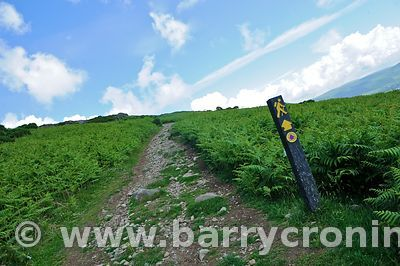 15th June, 2009. A Mountain Route signpost (National Looped Walk')  that leads up to Slieve Foye (Elevation 589 metres) as pa...