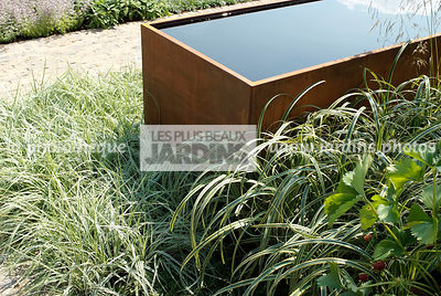 Association de graminées : Carex oshimensis 'Everest' et Carex trifida 'Rekohu Sunrise', Paysagiste : Paul Martin, Hampton Co...
