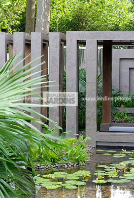 Contemporary garden, Exotic garden, Garden construction, Tropical garden, Water garden, water lily, Waterlily