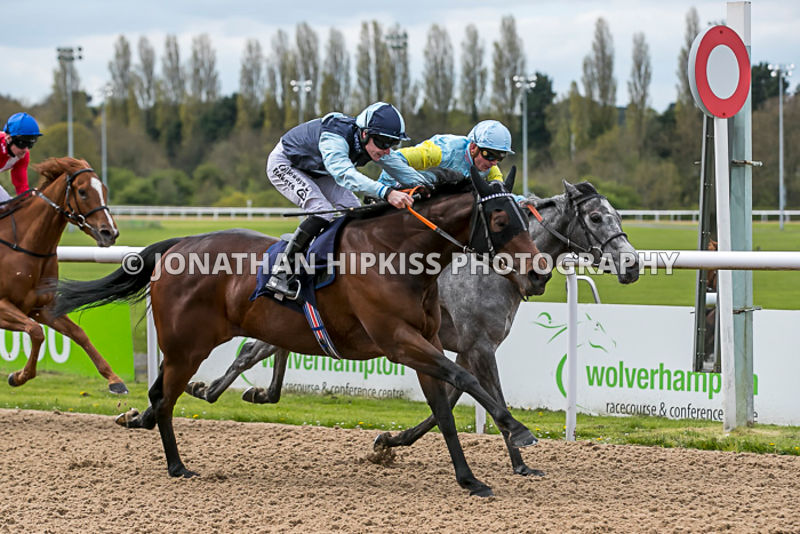 Wolverhampton Horse Racing 2018 photos