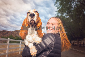 a basset hound in the arms of her human
