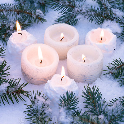 Christmas candles with branches in snow