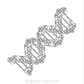 DNA #58 Outline