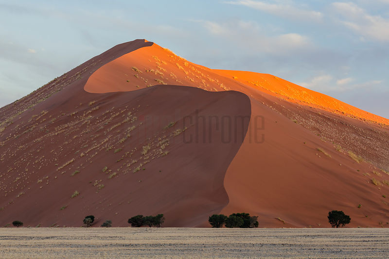 Namib Dune at Sunset