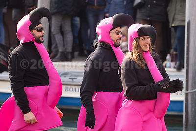 Men & Women in Pink Animal Costumes in the Venice Carnival Water Parade  on the Rio di Cannaregio Canal