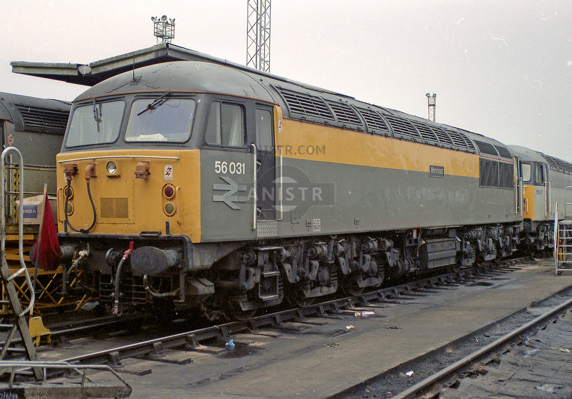 Diesel loco Class 56 No 56031  Knottingley