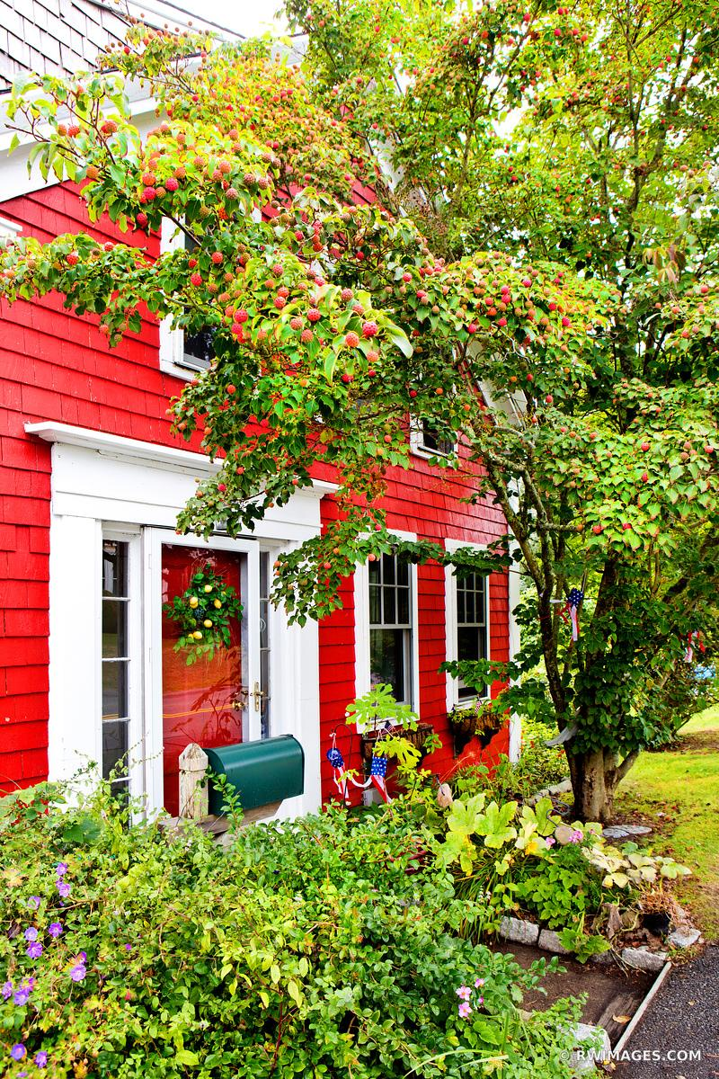 RED HOUSE CHATHAM CAPE COD MASSACHUSETTS COLOR