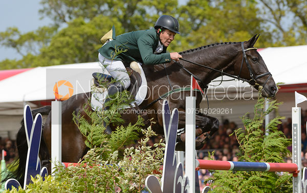 Austin O'Connor and RINGWOOD MISSISSIPPI - Show Jumping phase, Mitsubishi Motors Badminton Horse Trials 2014