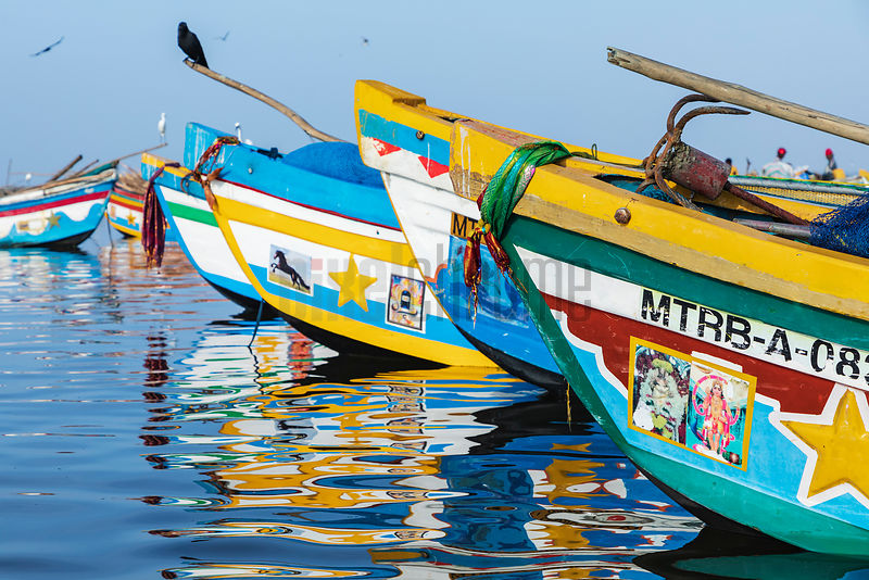 Colorful Fishing Boats at Crow Island Fish Market