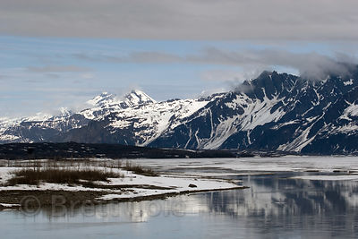 Summer scene along the icy Copper River, Alaska