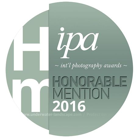 INTERNATIONAL PHOTOGRAPHY AWARDS™ 2016