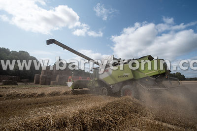 Headfort Harvest for Mark