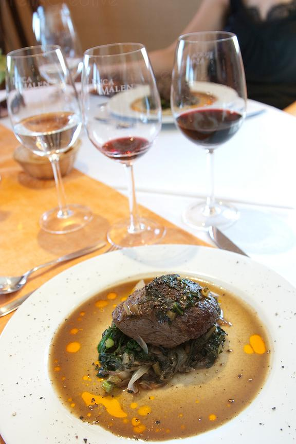 Beef filet mignon paired with full bodied red wine