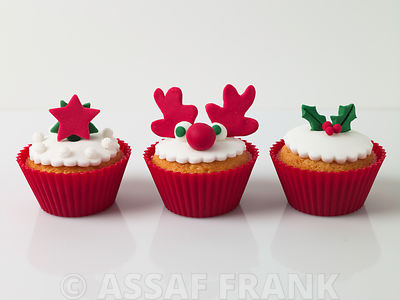 Christmas cupcakes with star, Rudolf the Reindeen and Holly shaped decorations