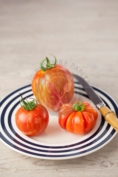 Striped Stuffer, Costoluto Fiorentino & Red Zebra Tomatoes on Plate