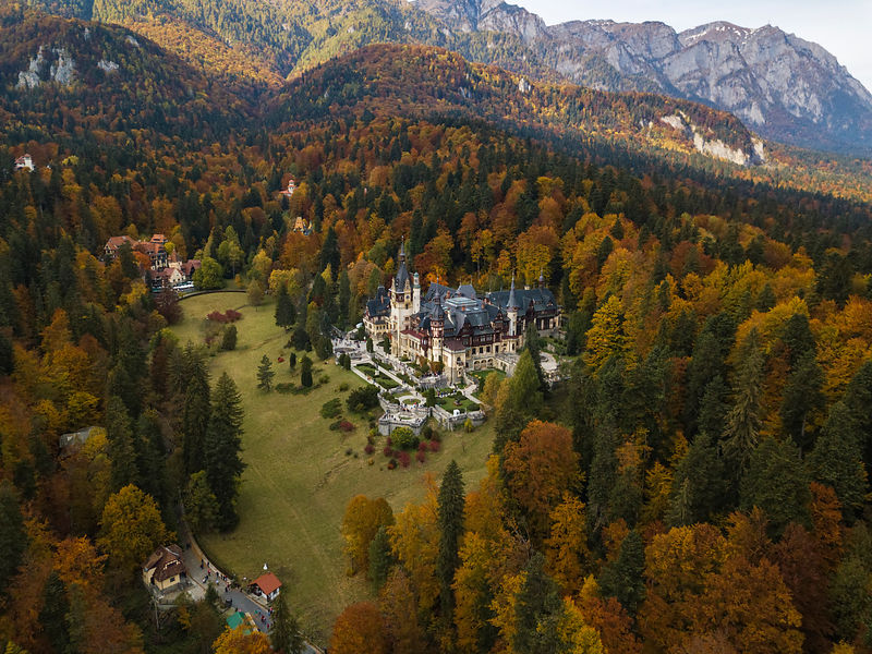 Elevated View of Peles Castle Surrounded by Autumn Foliage