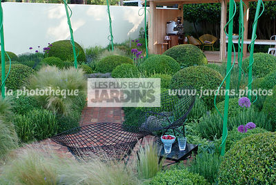 Ball shaped, Buxus, Contemporary garden, Digital, Pavement, Sphere shaped, Topiary, Common Box
