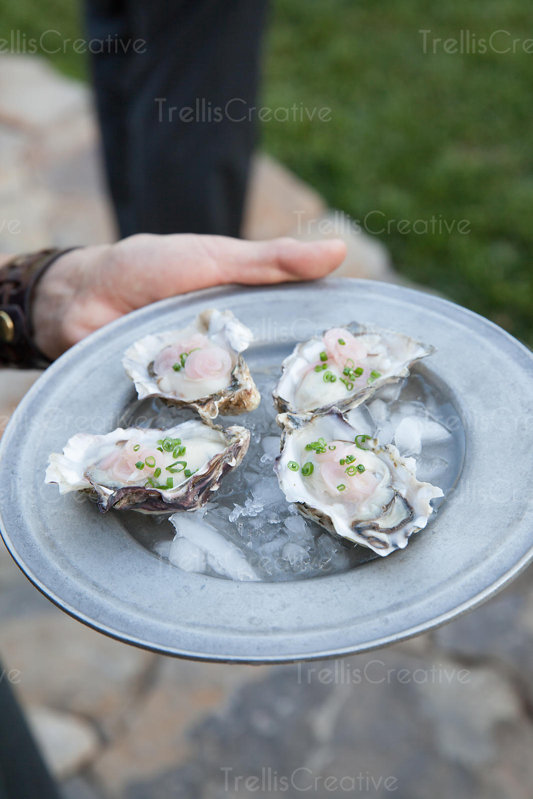 Platter of freshly shucked oysters