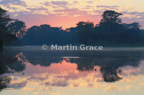 Pantanal dawn with mist rising off the water, River Cuiabá, Mato Grosso, Brazil