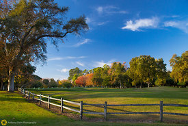 William Land Park in the Fall #2