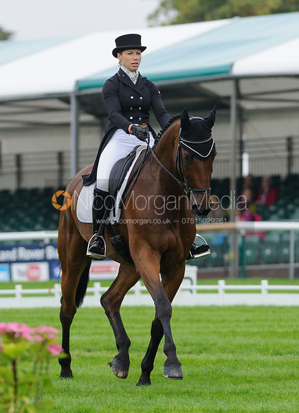 Megan Heath and ST DANIEL - dressage phase,  Land Rover Burghley Horse Trials, 4th September 2014.