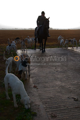 Cottesmore huntsman Neil Coleman and his hounds