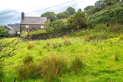Welsh Farmhouse- Capel Garmon, Wales